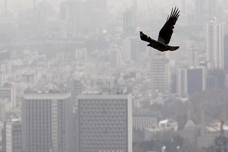 تداوم آلودگی هوا در تهران، دمای 39 درجه ای هوا در پایتخت